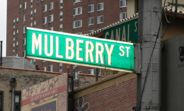 Mulberry Street Seuss. mulberry-street-sign.jpg